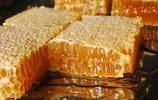 低於70的蜂蜜不要再買了,73歲老蜂農告訴大家不為人知的蜂蜜內幕
