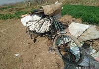 亳州農村老人活到老幹到老 可以活得舒心。