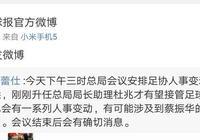 中國足協主席或易主 蔡振華不在分管足球