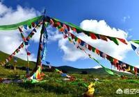 藏區很大,為什麼甘南最美,求甘南自駕遊攻略?