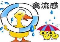 我們應該怎麼防範禽流感?