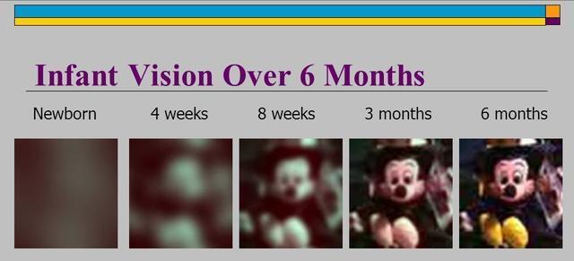 嬰兒什麼時候能看清媽媽的臉?這個月就看清了,你家寶寶達標了嗎