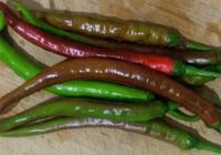 辣椒的這種做法你吃過嗎?面炒辣椒?還是辣椒炒麵?