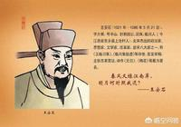 如何評價王安石改革?