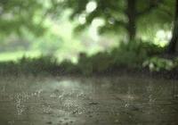 雨雨雨雨雨雨雨!據說6月只晴5天?現在好消息來了~