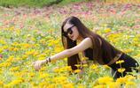 花海的百日菊一樣的開放,那裡有你的身影嗎?