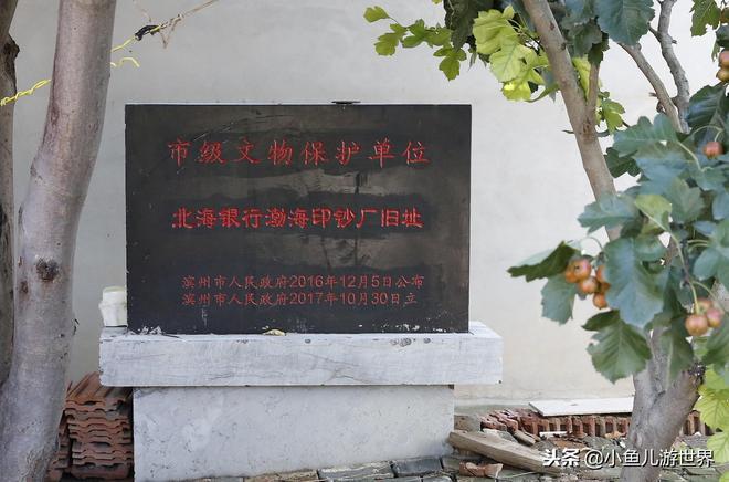 北方農村小院隱藏1942年地下印鈔廠,農民大哥24年前花1萬元買