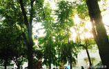 家鄉名校:我的母校之全國百強中學32--安徽安慶第一中學