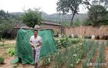 59歲農民把農村的住房裝飾一新,租給城裡人,1年5000元貴嗎