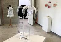 冏,藝術家的3D打印時裝和首飾遭失竊