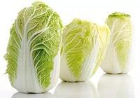 幾毛錢一斤的白菜,營養價值你知道嗎?