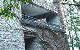 聯合國教科文組織唯一承認的中國美術類大學,就在杭州西湖邊