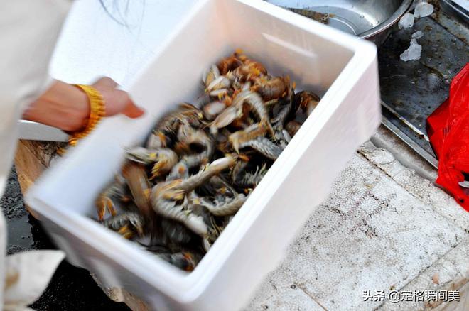 四月青島海鮮早市 蝦爬45元一斤蛤蜊10元2斤 夫妻誠信經營買賣好