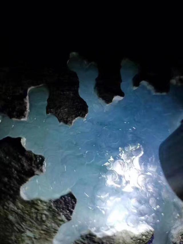 娟子翡翠原石——極品莫西沙水泥皮品賞