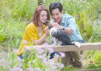 《一條狗的使命2》:被狗狗感動之餘 還記住了男主劉憲華