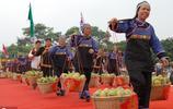 廣西田東'芒果之鄉',有果農芒果滯銷,如今也是芒果最好吃的時候