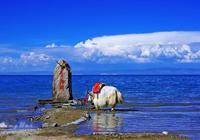人在旅途:青海湖