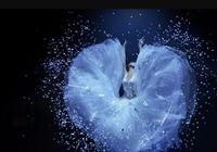 楊麗萍的《孔雀之冬》走過海口來到廈門,美麗了自己震撼了觀眾
