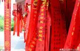 """""""高考""""來了,南京玄武湖公園祈福處掛滿祈願牌,場面壯觀"""