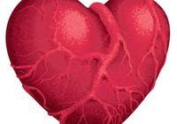 為什麼心臟不得癌症?