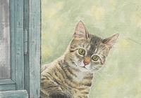 旅美畫家呂吉人畫中的萌寵