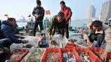 冬季來青島 海鮮少不了 碼頭紅頭魚10元3斤 鮑魚10塊一隻物美價廉
