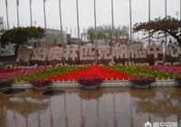 春天去青島旅遊,有哪些地方推薦嗎?有沒有好點的民宿推薦?