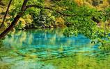 九寨溝之旅,湖水碧藍碧藍