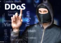 ddos攻擊成本持續走低,7美元就能打癱一個網站,企業如何自處?