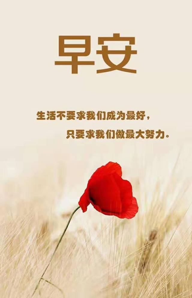 3月9日(每一個成功的人,都有一段沉默的努力時光)早安