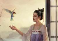 唐代女詩人魚玄機的愛情故事。