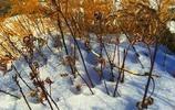 旅遊圖集 貝加爾湖 湖面雖然已經結冰但風景也非常美非常值得一遊