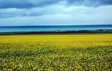 魅力青海湖