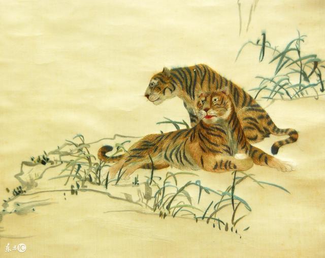 虎是獸中之王!屬虎的屬相婚配表!
