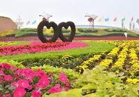 河南省唯一一箇中國花木之都