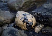 開採了這麼多年的石油,是如何形成的,會不會被全部開採完呢?