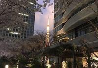 東京·米其林餐廳食用指南