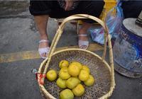 六旬夫妻在大集上賣自家甜柿,買回家咬一口就知道上當了