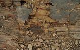 """雲南澄江古生物化石群,這裡曾被譽為""""世界古生物聖地""""!"""