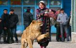獅子和人類