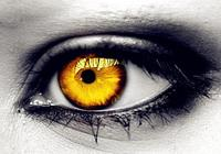 《黃金瞳》莊瑞跟中川陽平以及馮權都有黃金瞳,他們之間有何區別