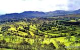 這裡曾經是拉羊皮不粘草的地方,如今卻成了青海最美的梯田!