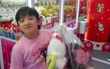 吳鎮宇兒子費曼胖到認不出,網友說:這不是李湘家姑娘王詩齡嗎?