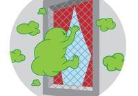 新窗紗可過濾空氣汙染