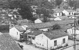 城市的記憶:南方油城廣東茂名老照片 懷念