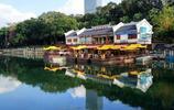 """南寧的南湖公園""""如夢江南""""般的景色,吸引無數的遊客流連忘返"""