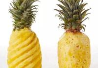 菠蘿為什麼要泡了鹽水才可以吃?