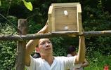"""我叫李佔江,26歲,我在山裡養了1000窩""""殺人蜂"""""""