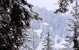 阿羅薩為什麼是阿爾卑斯的滑雪療養休閒勝地?6張圖片告訴你