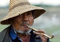 不戒菸,選擇少吸菸,會更健康嗎?